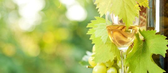 vin d Alsace