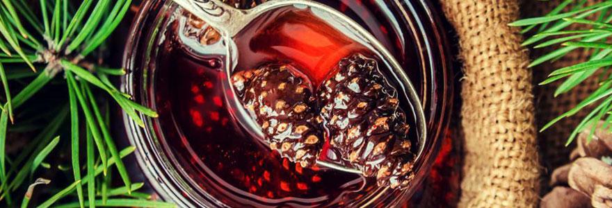 Bienfaits du miel de sapin